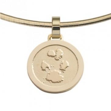 jewel, Schmuck, sieraad, pendant, anhänger, hanger, pawprint pet, pootafdruk huisdier, adore, gold, goud, yellow, geel,