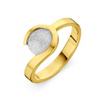 ring, fingerprint, fingerabdrück, vingeradruk, allure, gold, goud, white, yellow