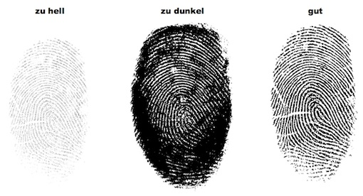 Example Fingerprint